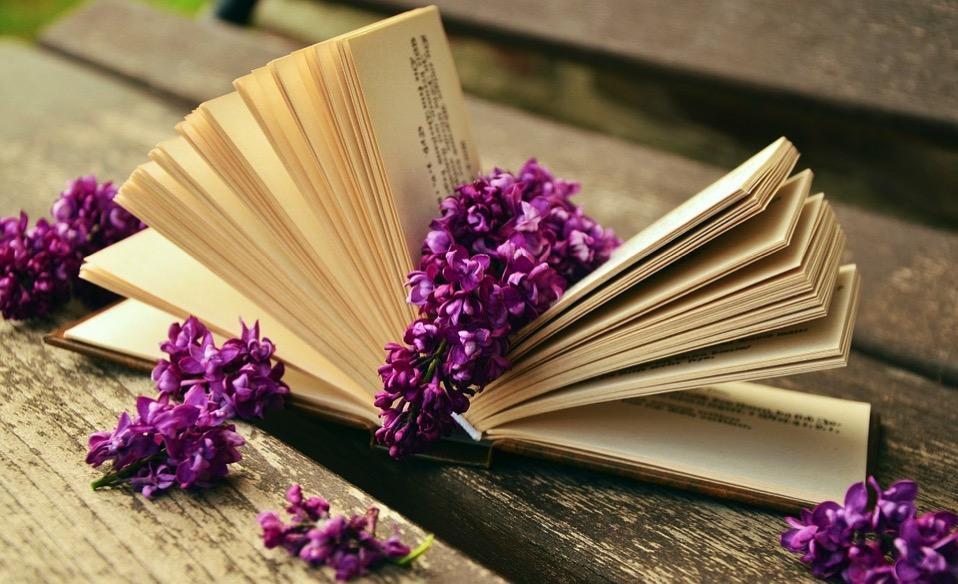 Book 759873 960 720